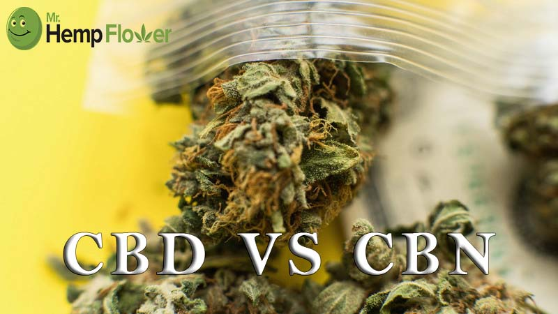 CBD vs CBN