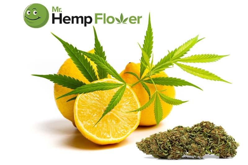 Limonene Benefits