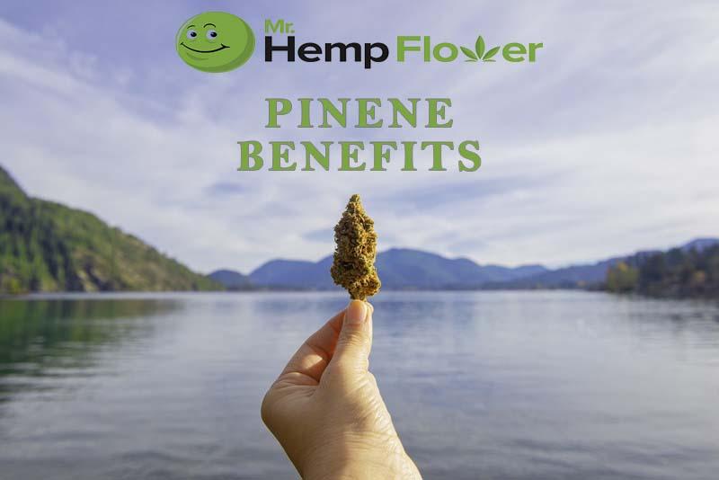 Pinene Benefits