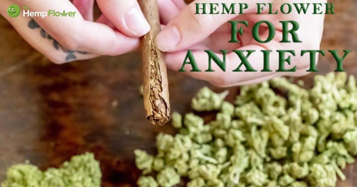 Hemp Flower For Anxiety | Will Smoking Hemp Relieve Stress?