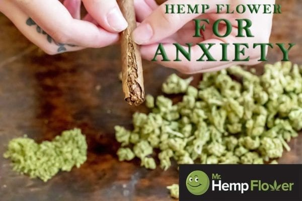 Hemp Flower For Anxiety