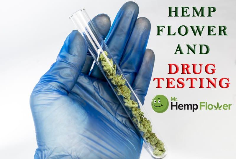 Hemp Flower and Drug Tests