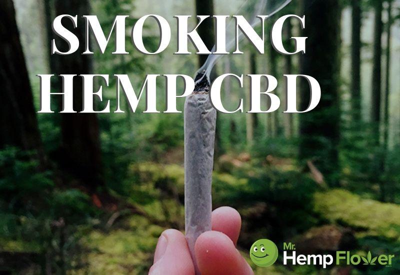 smoking hemp