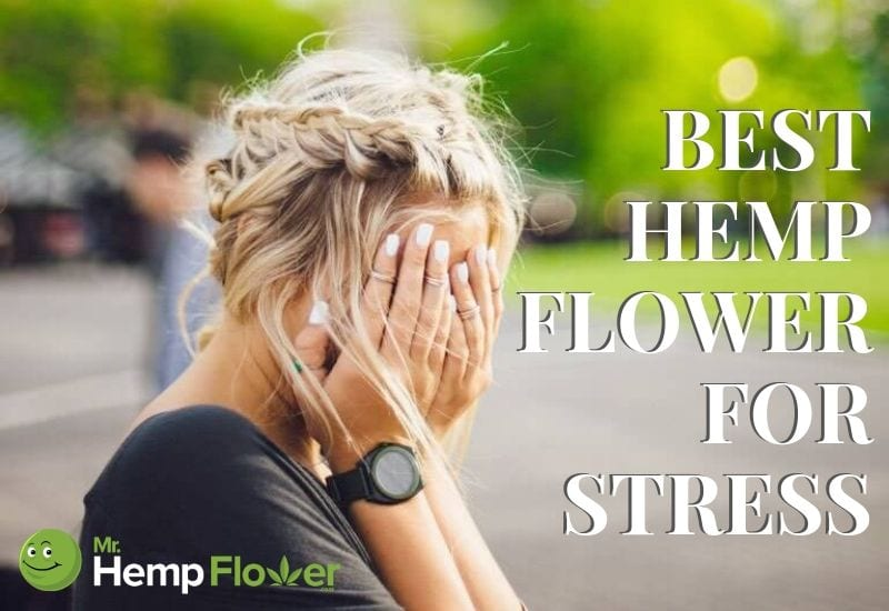 Best hemp flower for stress