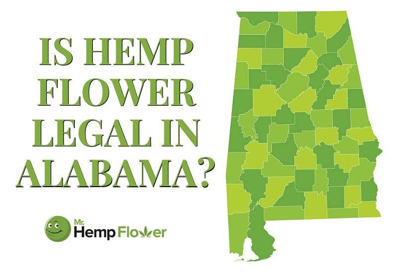 medical marijuanas legal alabama