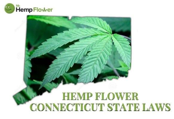 Hemp Flower Connecticut State Laws