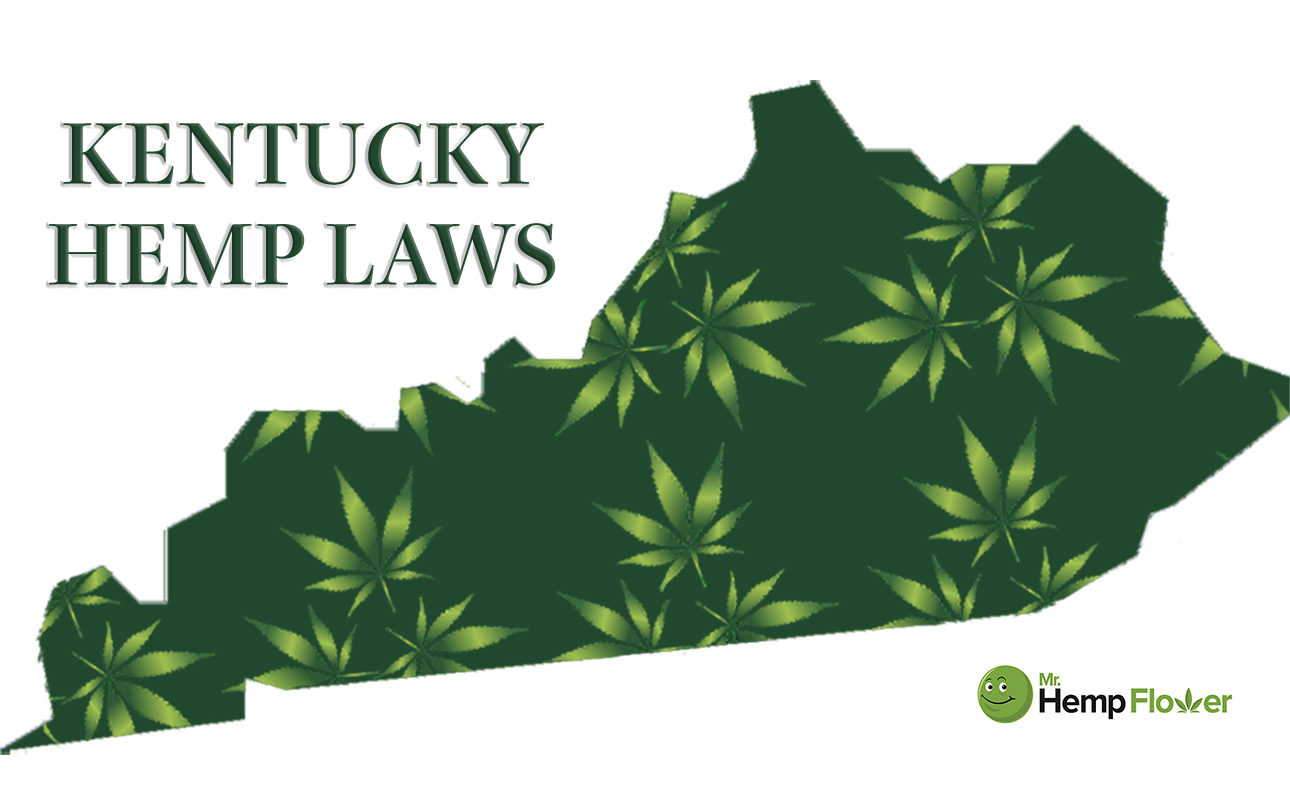 Hemp Flower in Kentucky