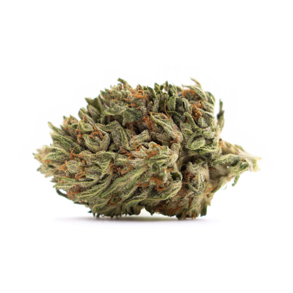 CBG Hemp Flower-Ghost Rider