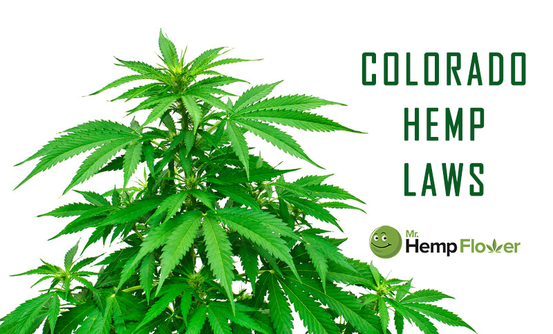 Colorado Hemp Laws