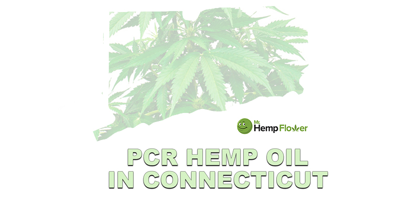Full Spectrum CBD Oil Connecticut