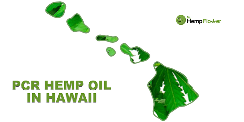 CBD Oil in Hawaii