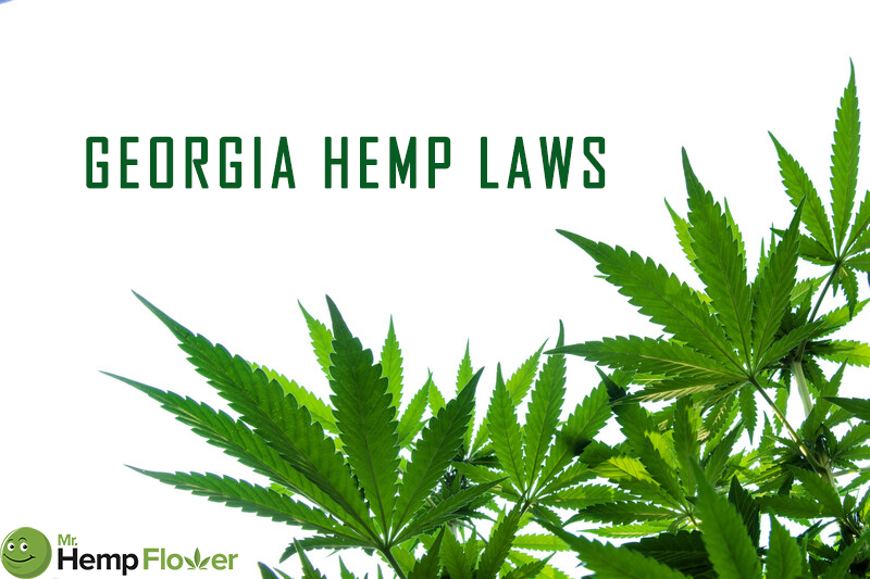 Georgia Hemp Laws