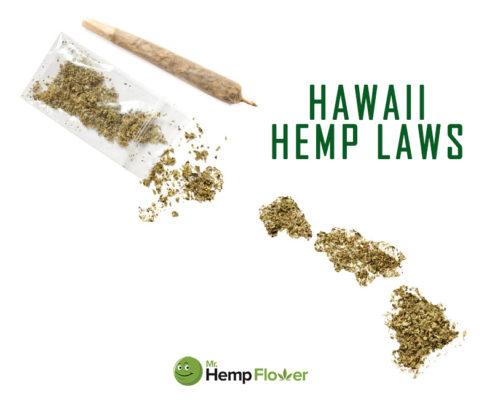 Hawaii Hemp Laws