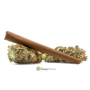 CBG Hemp Flower Ghost Rider Blunt