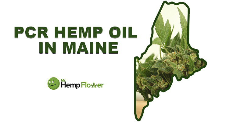 cbd laws in maine