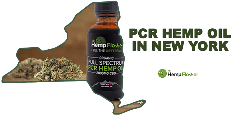 Full Spectrum CBD oil New York