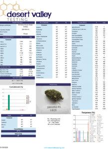 ceiba strain review