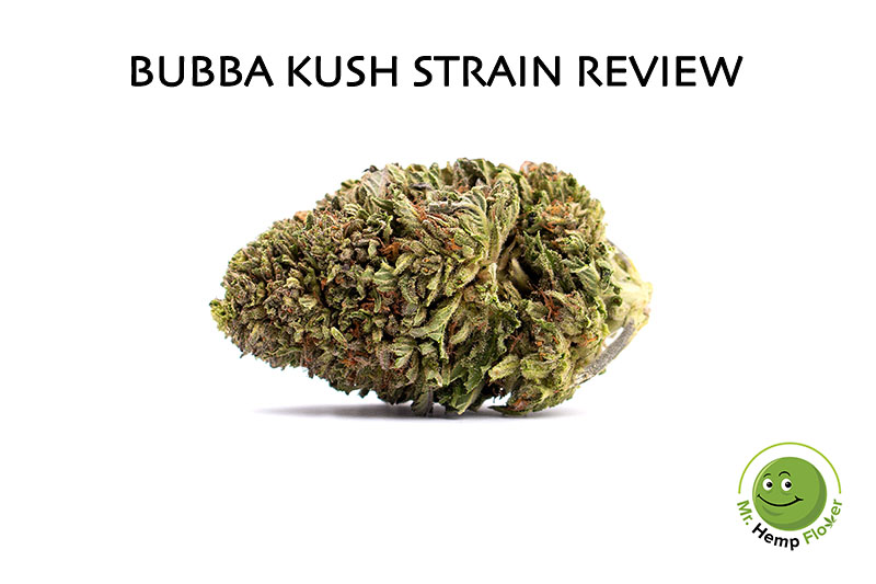 Bubba Kush Hemp Strain Review