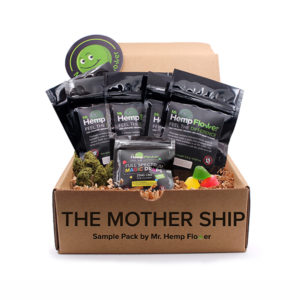 Mother Ship Bundle