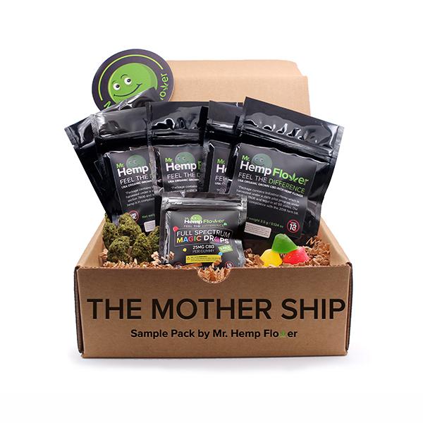 Mother Ship Bundle