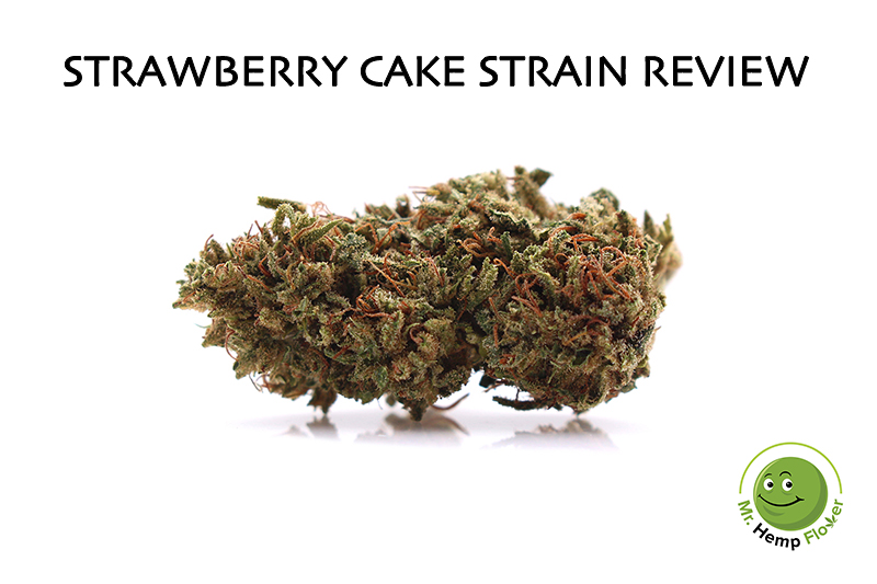 Strawberry Cake Hemp Strain Review