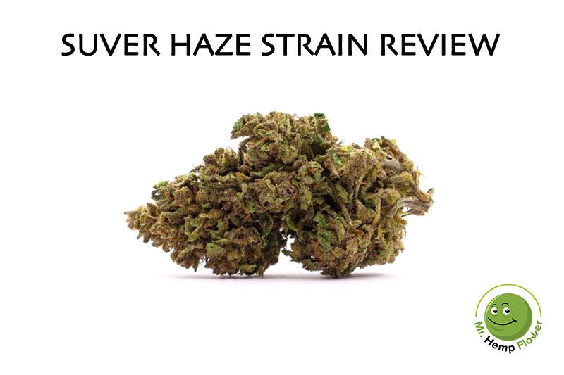 Suver Haze Review