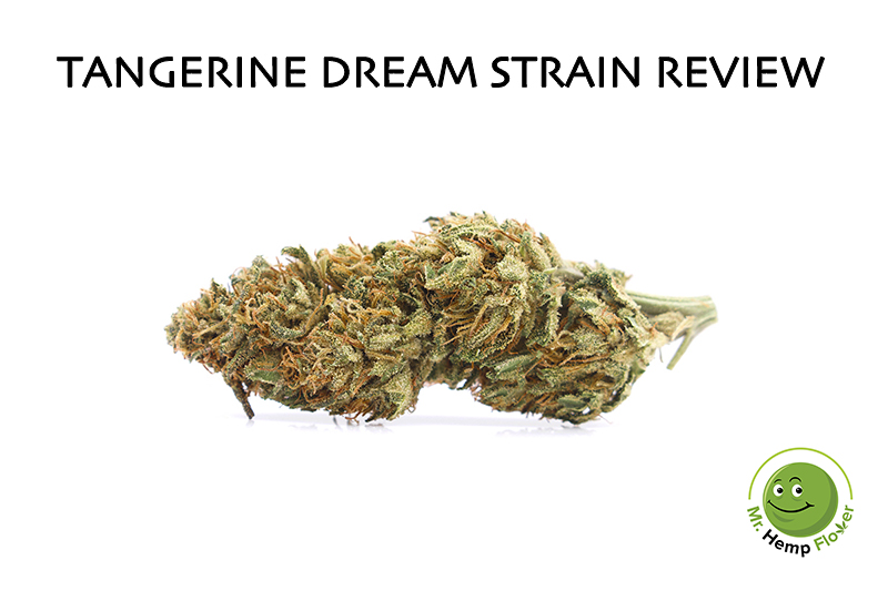 Tangerine Dream Hemp Strain Review