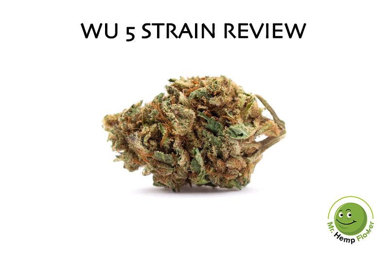 Wu 5 Strain Review