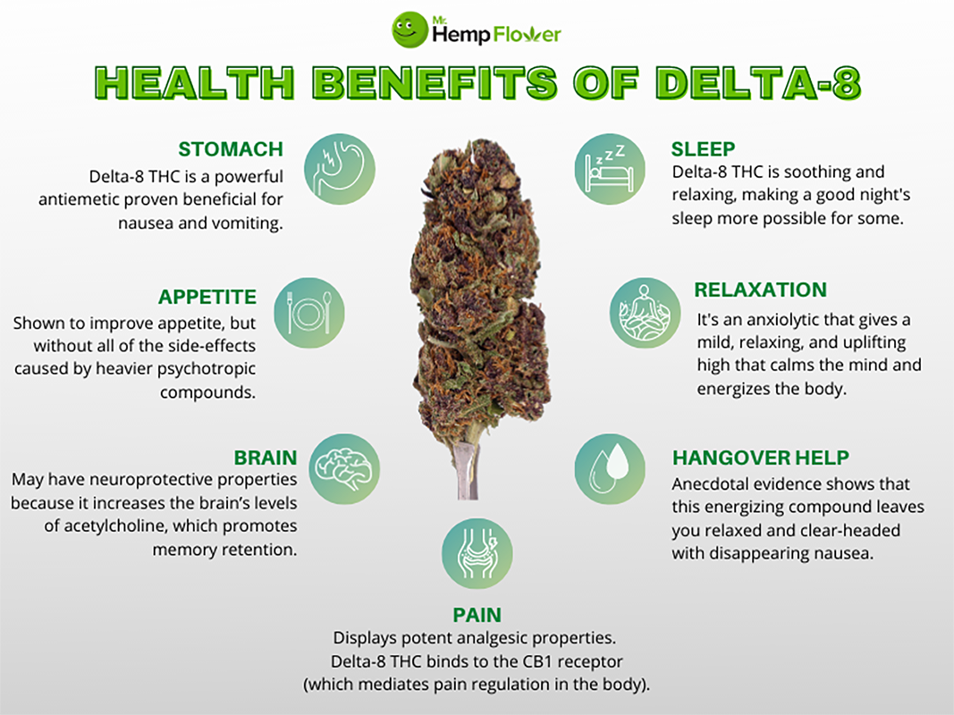 Delta-8 Infographic 800