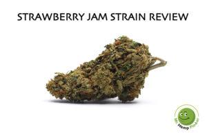 Strawberry Jam Review