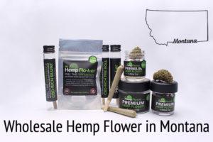 Wholesale Hemp Flower in Montana