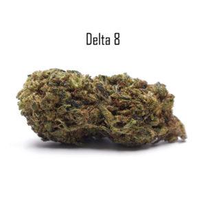 D8 Blueberry