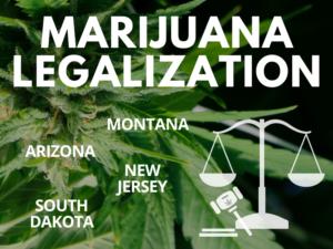 MJ Legalization 2020