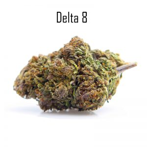 Golden Kush Delta THC 8
